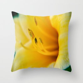 Day Lily Close up-4 Throw Pillow