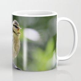 Baby Blue Tit Coffee Mug