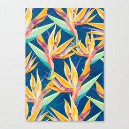 Strelitzia Pattern Canvas Print
