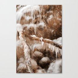 Frozen Harp Falls - Sepia Nostalgia Canvas Print
