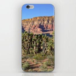 Cedar Pocket, Virgin River Gorge, AZ iPhone Skin