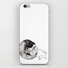 Skull study iPhone & iPod Skin