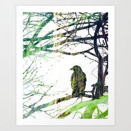 Forest Raven Art Print