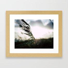 Shape in the sun Framed Art Print