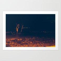 Andilana Night Art Print