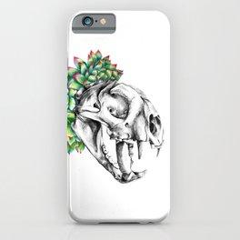 Rock Rose Cat Skull iPhone Case