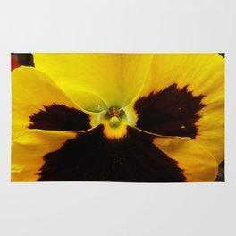 Pansy rugs society6 golden black eyed pansy violet yellow flower rug mightylinksfo