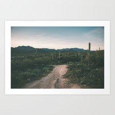 Desert Roads Art Print