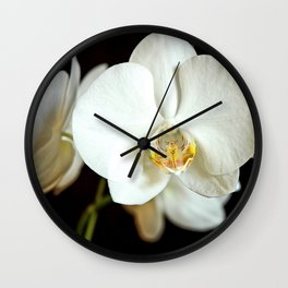 White Phalaenopsis Moth  Orchid Wall Clock