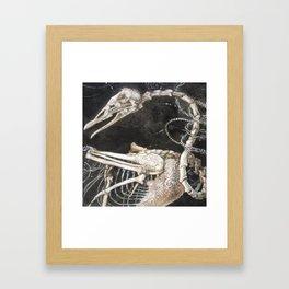 Royalty in Exile Framed Art Print