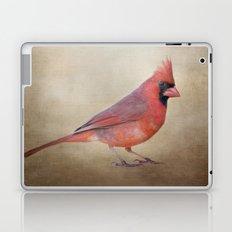 The Red Cardinal Laptop & iPad Skin
