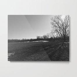 gravel pit tree Metal Print