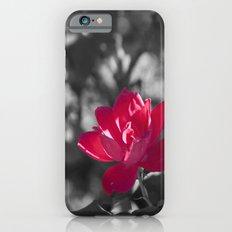 Pretty In Pink iPhone 6s Slim Case