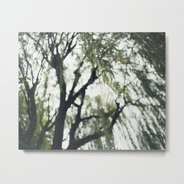 Beneath the Willow Tree Metal Print