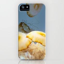 Wondrous Window iPhone Case