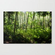 Bellingham Canvas Print