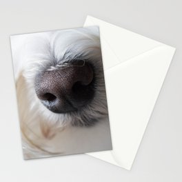 Sweet Little Sniffer Stationery Cards