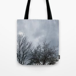 Winter Sky, Cloudy Winter Sky, Beautiful Clouds and Trees Tote Bag