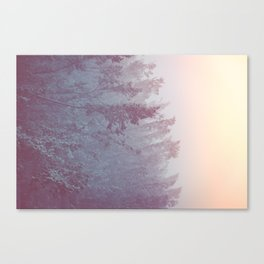 Forest Fog - Snowy Mountain Trees at Sunset Canvas Print