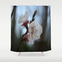 Close Up Apricot Blossom In Pastel Shades Shower Curtain