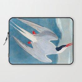 Arctic Tern Bird Laptop Sleeve
