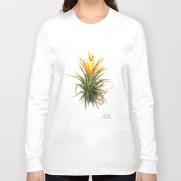 Tillandsia Druid Air Plant Watercolors Long Sleeve T-shirt