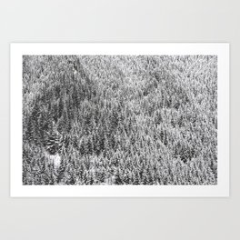 trees on a mountain Art Print