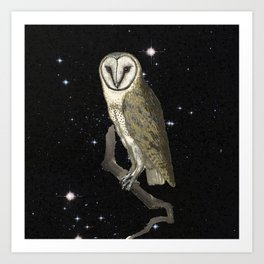 Owl in the Universe Art Print