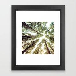 Green Forest Sky Trees Framed Art Print
