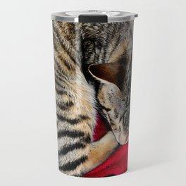 Cute Tabby Cat napping Travel Mug