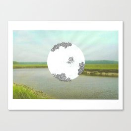 sun. Canvas Print