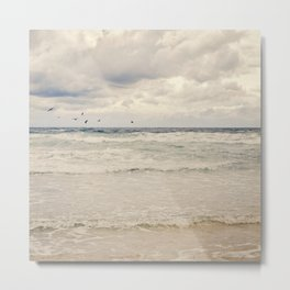 Seagulls take flight over the sea. Metal Print