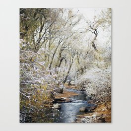 A Creek on a Snowy Day in Boulder, Colorado Canvas Print