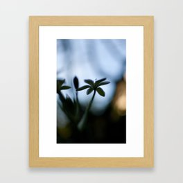 looking towards spring Framed Art Print