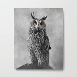 Birds Of Prey. Long Eared Owl 2 Metal Print
