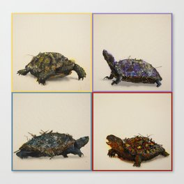 The four Turtles. Canvas Print