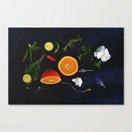 Edible Garden Canvas Print