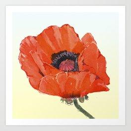Poppy  Love Art Print