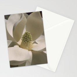 Southern Magnolia - Magnolia grandiflora Stationery Cards