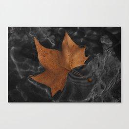 Leaf on dark water Canvas Print