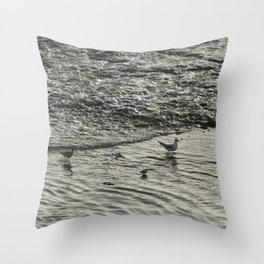 Shorebirds Wading Seashore Curlew Sandpipers Seagull Throw Pillow