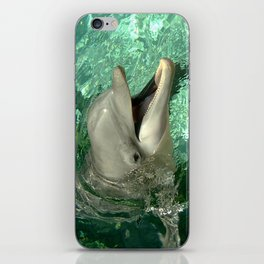 Smiling Dolphin iPhone Skin