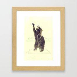 Coon Framed Art Print