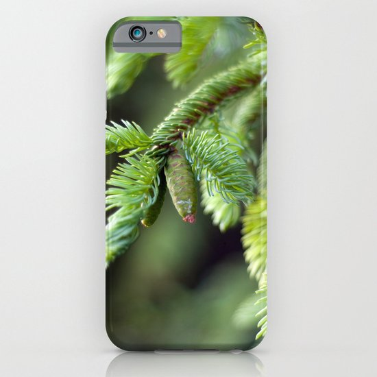Baby Pine Cone iPhone & iPod Case