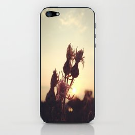 Rise to the Day iPhone Skin