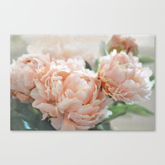 Peach Peonies Canvas Print