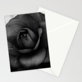 Camellia Black and White 3 Stationery Cards