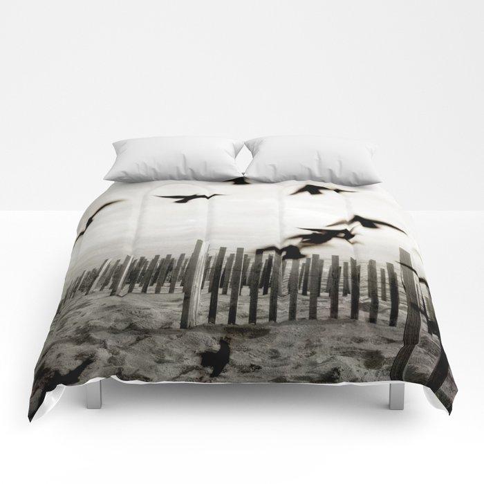 Surrender Comforters