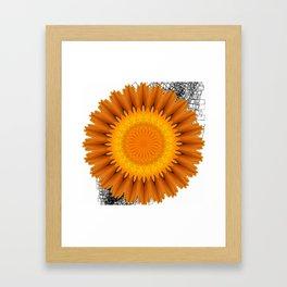 Marigold abstracted to a mandala Framed Art Print