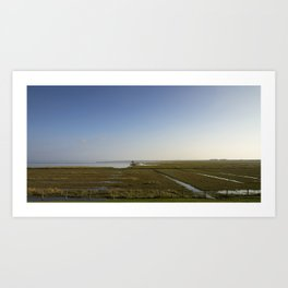 The salt marshes of Groningen Art Print